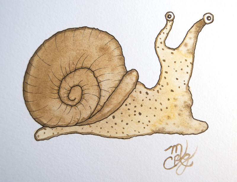 watercolor snail tutorial 1