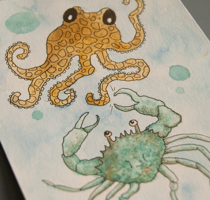 Crab & Octopus Illustration by Melissa Rohr
